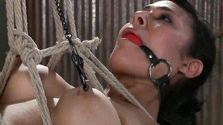 Forced lesbian prison sex watch biguz tubes XXX