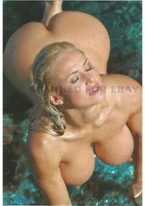 Sexy busty nude girls