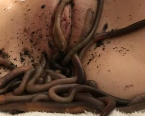 Woman inserting worms in pussy videos free porn videos